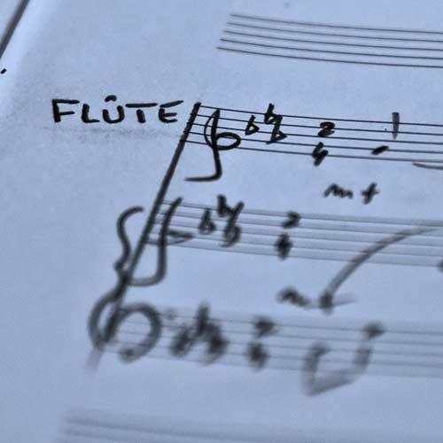 Flûte à bec solo